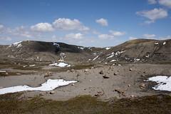 70 Mile Butte Trail - DSC_3473a (Markus Derrer) Tags: 70milebutte grasslands grasslandsnationalpark saskatchewan may markusderrer hikingtrail