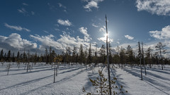 Finnland 2019 (Stefan Giese) Tags: nikon d750 finnland lappland 1635mmf4 1635 posio