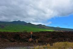 503 (bigeagl29) Tags: makena state park maui hawaii oceanfront beach