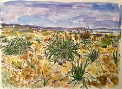 Baldaio (J Cap Blanco) Tags: acuarela watercolor waterc watercolour baldaio costa da morte del la muerte