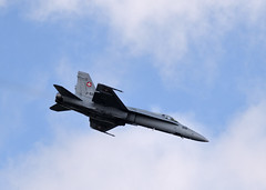 DSC_1249_ (jhellender) Tags: jhellender riat riat2018 airshow swissairforcemcdonnelldouglasfa18chornet mcdonnell douglas fa18c hornetswiss air forcefa18c hornet