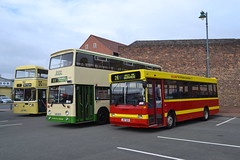 Merseyside Transport 1788 OEM788S - Blackpool Transport 353 UHG353Y - PMT 917 J917SEH (Will Swain) Tags: gladstone pottery museum during pmt running day 21st october 2018 stokeontrent stoke trent potteries preserved heritage bus buses transport travel uk britain vehicle vehicles county country england english 917 j917seh merseyside 1788 oem788s blackpool 353 uhg353y