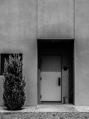 Untitled (ber52) Tags: door tree nationalhispanicculturalcenter