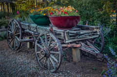 The Flower Wagon (donnieking1811) Tags: newmexico santafe silversaddlemotel wagon pots flowers shrubs hdr canon 60d lightroom photomatixpro outdoors