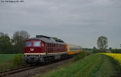 132 293 EBS bei Buttstädt 01.05.2019 (Falk Hoffmann) Tags: diesellok eisenbahn bahnhof reisezug reichsbahn dr ebs städteexpres ludmilla br132 br232