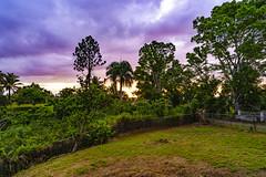 _DSC2040 (Shane Woodall) Tags: 2019 85mm april ilce9 puertorico sansebastian shanewoodallphotography sonya9 vacation