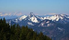 Rottach-Egern - Mountains (cnmark) Tags: germany deutschland bavaria bayern rottachegern tegernsee wallberg alpen alps mountins berge trees bäume snow capped schee blauer himmel blue sky nature natur ©allrightsreserved