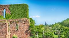 Alte Mauern (micagoto) Tags: meisen klosterheiligkreuz klosterruine ruine heiligkreuz