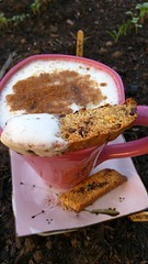 in the garden (wmpe2000) Tags: 2018 cell garden seedlings teatime cappuccino inthekitchen biscotti chocolateorangebiscotti snapchat900848133