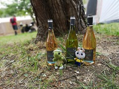 IMG_20190519_114855 (Christophe FRETARD) Tags: tortue turtle hare lièvre vin bouteille wine bottle