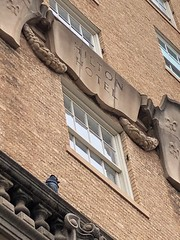 San Angelo, Texas (jericl cat) Tags: sanangelo texas former hilton hotel