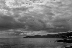 Landscape - Film Leica (Photo Alan) Tags: vancouver canada sea water waterfront landscape clouds blackwhite blackandwhite monochrome leica leicamp filim filmcamera filmscan filmleica