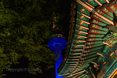 untitled-1203-Edit.jpg (pholl000) Tags: seoul
