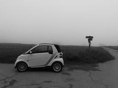Smart (shortscale) Tags: smart schwarzweiss blackandwhite noiretblanc monochrome weg kreuzung schild wiese nebel