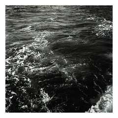 * (Daniel Espinoza) Tags: bw kodaktmax100 rolleiflex spain essence film film120 onlyfilm danielespinoza analogphotography analogica conceptual fineartphotography sea mar filmphotography