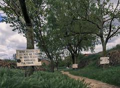 El bosque animado (*Nenuco) Tags: arasdelosolmos cambio climatico d5300 nikon nikkor 18105 valència españa spain protesta verde green jesúsmr clouds nubes