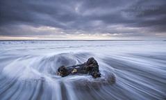 Driftwood (Elidor.) Tags: driftwood spittal berwickupontweed northumberland sea tide wave sunrise cloud beach northeast d90