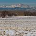 Rocky Mountain Arsenal National Wildlife Refuge - Denver, Colorado