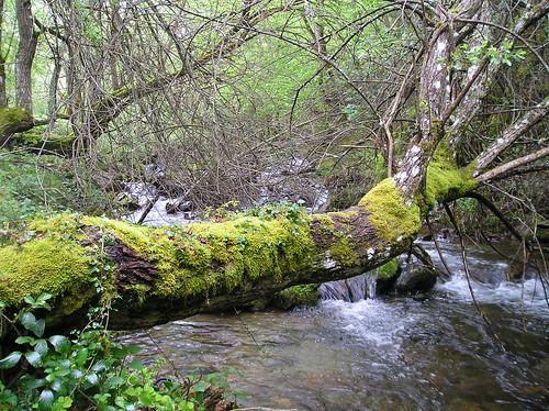 Senderismo por ruta del Valle de Altuzarra Ezcaray Fotografia Javi Cille (22)