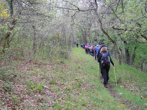 Senderismo por ruta del Valle de Altuzarra Ezcaray Fotografia Javi Cille (8)