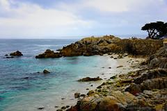 LoversPoint_01 (DonBantumPhotography.com) Tags: landscapes seascapes coastline californiacoast pacificgrovecalifornia ocean beach shore sea sky donbantumcom donbantumphotographycom loverspoint