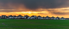 New Dawn... Explored #43, 3rd May 2019 (Aleem Yousaf) Tags: morning flickr camera digital new dawn sun frame sunrise golden hour birds green grass houses glow rays essex nikkor nikon 2470mm field photography photo walk city