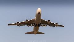 TF-AAL | SAUDIA B747 | FEZ (@AazizPhoto) Tags: boeing747400 boeing747 747400 b747 b747400 boeing744 b744 744 widebodyjetairliner widebody jetairliner longhaulairliner 747428 boeing747428 b747428 tfaal fgitj cnmsn32871 ln1343 gecf680c2b1f generalelectriccf680c2b1f airatlantaicelandic abd saudia saudiarabianairlines sva sva2245 sv2245 saudia2245 charterflight omra umrah hajjflight jumbo jumbojet queenoftheskies winglet gearup up travel takeoff fly flying rawphotography rawaviation ishootraw aviation avgeeks aviationgeeks jet jetaircraft airliner airline morocco fessaissairport fèssaïssairport fès fez gmff nikon nikonaviation nikonspotters aviationnikon moroccanspotters aazizphoto youssefaazizphotography sky