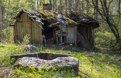 Outokumpu - Finland (Sami Niemeläinen (instagram: santtujns)) Tags: outokumpu suomi finland luonto nature särkisalmi outdoors pohjoiskarjala north carelia metsä forest mylly mill