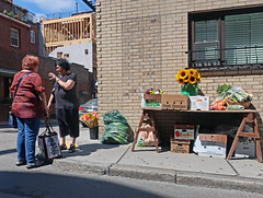 BostonSawhorseTable (fotosqrrl) Tags: boston massachusetts streetphotography urban northend salemstreet cooperstreet streetvendor table produce flowers