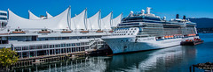 2019 - Vancouver - Canada Place Cruise Ship Dock (Ted's photos - For Me & You) Tags: 2019 bc britishcolumbia canada cropped nikon nikond750 nikonfx tedmcgrath tedsphotos vancouver vancouverbc vancouvercity vignetting celebritysolstice cruiseship ship cruiser canadaplace sails canadaplacesails port portfvancouver burrardinlet bluesky blue reflection waterreflection coalharbour coalharbourvancouver vancouvercoalharbour widescreen wideangle