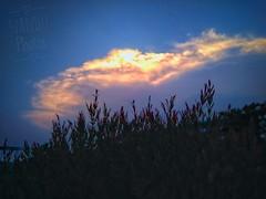IMG_20190520_180624-01 (saumikchowdhury) Tags: sun set evening aun bangladesh