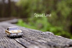Testing A Classic (Haytham M.) Tags: cars fun outdoor outdoors tree trees spring day foggy wood woods road highway forest sigma1770 canont7i american pontiac limit ticket speed car classic