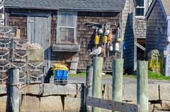 Rockport Harbor (gardenpower) Tags: newengland lighthouse easternpoint massachusetts gloucester marine waterfront naurtical