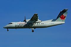 C-GEWQ (Air Canada express - JAZZ) (Steelhead 2010) Tags: aircanada aircanadaexpress jazz dehavillandcanada dhc8 dhc8300 yyz creg cgewq