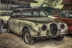 Jaguar Oldtimer (olds.wolfram) Tags: oldtimer jaguar junkyard rusty rostig
