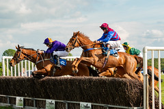 Race 7 BONUS - Hill Runner and Catwalk Frank (JTW Equine Images) Tags: p2p point pointtopoint knutsford cheshire tabley nh racing horse equine jockey trainer jumps
