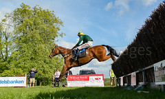 Race 7 - Teeton Surprise-3 (JTW Equine Images) Tags: p2p point pointtopoint knutsford cheshire tabley nh racing horse equine jockey trainer jumps