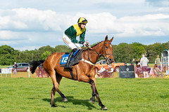 Race 7 - Teeton Surprise (JTW Equine Images) Tags: p2p point pointtopoint knutsford cheshire tabley nh racing horse equine jockey trainer jumps