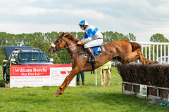 Race 6 BONUS - Love Around-3 (JTW Equine Images) Tags: p2p point pointtopoint knutsford cheshire tabley nh racing horse equine jockey trainer jumps