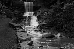 DSC_8995 (CarbonScoring) Tags: waterfall hiddenfalls monochrome st paul mn