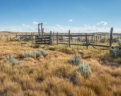 2018-07--SK-Grasslands-02 (gabbert_james) Tags: fence grasslands national park corral saskatchewan canada