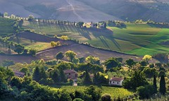 *Montepulciano Countryside* (Albert Wirtz @ Landscape and Nature Photography) Tags: albertwirtz tuscany toscana toskana montepulciano paesaggi paysage campagne campagna campo italy italia italien montepulcianocountryside stadtmauer citywall zypressen cipressi cypress landschaft nature natura natur fineartphotography landscapefineart paisaje albertwirtzlandschaftsundnaturfotografie albertwirtzlandscapeandnaturephotography rural countryside ländlich travel nikon gegenlicht backlight