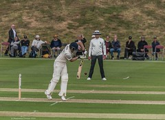 (frattonparker) Tags: btonner isleofwight lightroom6 nikond810 raw frattonparker sigma150500mm cricket