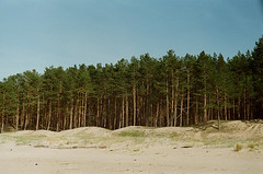 002265860023 (wu.shaolin) Tags: zenit et analog film camera exposure 50mm f2 20 kodak nature latvija latvia riga seaside girl light shadow colorful colors beautiful shore woods forest pines sand background