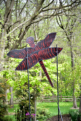 JIM_2785 (James J. Novotny) Tags: dragonflies sculptures sculpture d750 nikon rotarygarden rotarybotanicalgardens gardens garden gardenbotanical unlimitedphotos unlimiedphotos unlimited art artwork