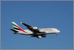 Emirates A6-EEJ. (PS_Bus_Driver) Tags: emirates a6eej airbusa380 egcc manchesterairport finalapproach ek19 dubai