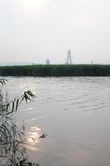 River (theq629) Tags: taiwan taipei river water sun bridge riverside longshanriversidepark wanhua