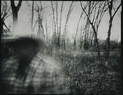 Drifter (micalngelo) Tags: analog filmphoto contactprint pinhole pinholephotography largeformatpinhole toycamera toycameraphotography