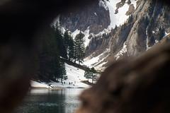 Wooden cave (Churrumburru) Tags: wood lake trekking alps mountains snow vintage dramatic