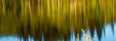 Brush strokes (samujjwalsahu) Tags: weekend suomi roadtrip travel friends sunset countryside lake sky forest villarajala finland east russiaborder kesä portraits landscape fujifilm fujifilmxseries fuji primelens zoomlens kompanero leatherbag sunglasses fujifilmxt20 fujifilmxe1 reflection boat doubleexposure yoga